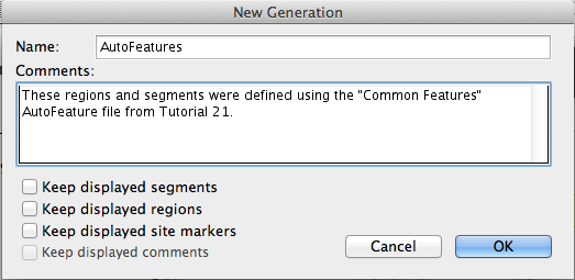 Figure 2.94: Creating a New Generation for AutoFeatures