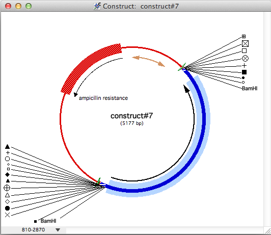 Figure 2.97: Part of Construct#7 Selected and Ready to be Restyled